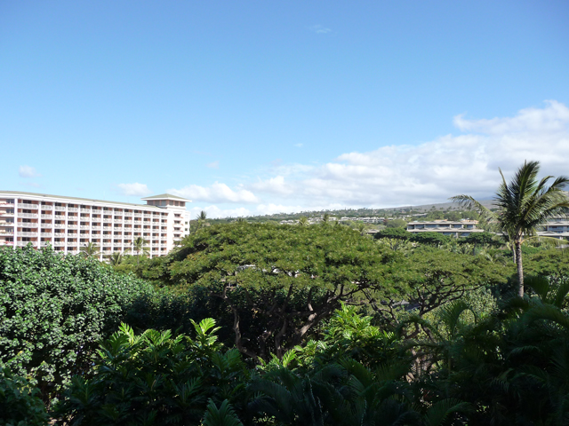 Four Seasons Maui Garden View Room