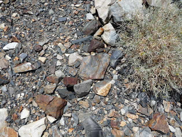 Scree-Closeup-At-Convict-Lake