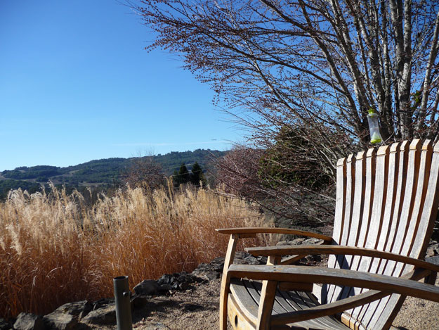 Adirondack-Chair-In-Wine-Country