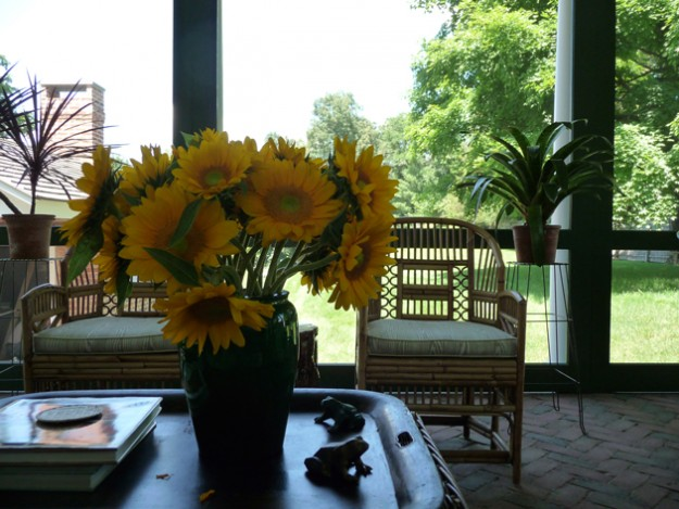 Sunflowers-In-The-Day