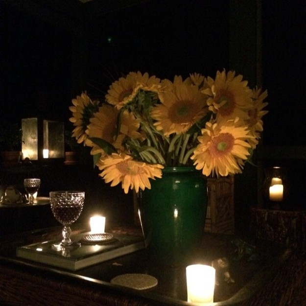 Sunflowers In The Night