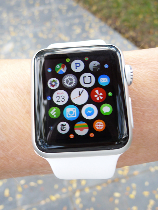 Face-of-the-Apple-Watch