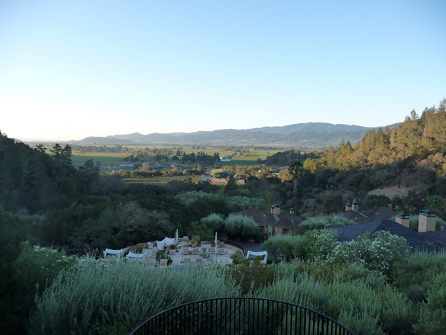 view-of-napa-valley-from-auberge-du-soleil-restaurant